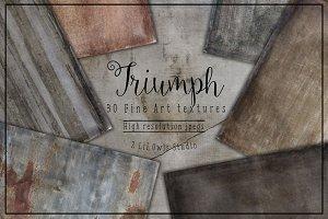 Triumph Fine Art Textures