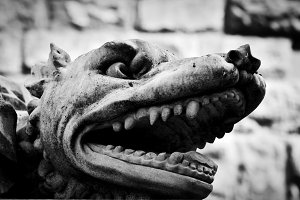 Sculpture of angry wolf, Florence.