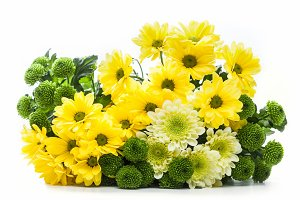 Bouquet of fresh spring flowers.