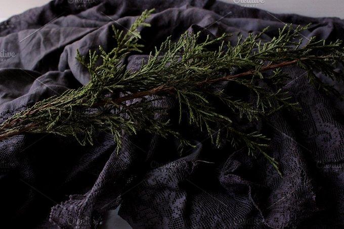 Black & Green 3.0 - Beauty & Fashion