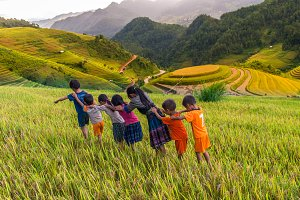 children are playing in rice terrace