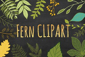Green Fern, Leaf, Leaves Clipart Set