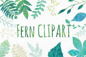 Watercolor Fern, Leaf Clipart Set