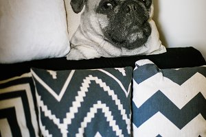 pillows with prints