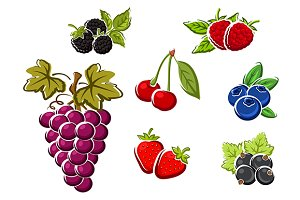 Juicy berry fruits