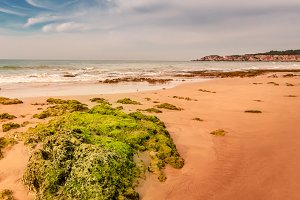 Algarve coast III