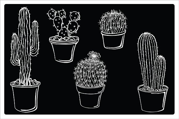 Cacti, vector in Illustrations - product preview 1