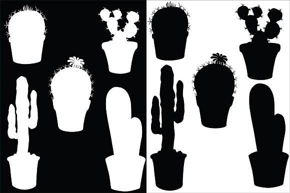 Cacti, vector in Illustrations - product preview 2