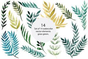 Plants elements, vector