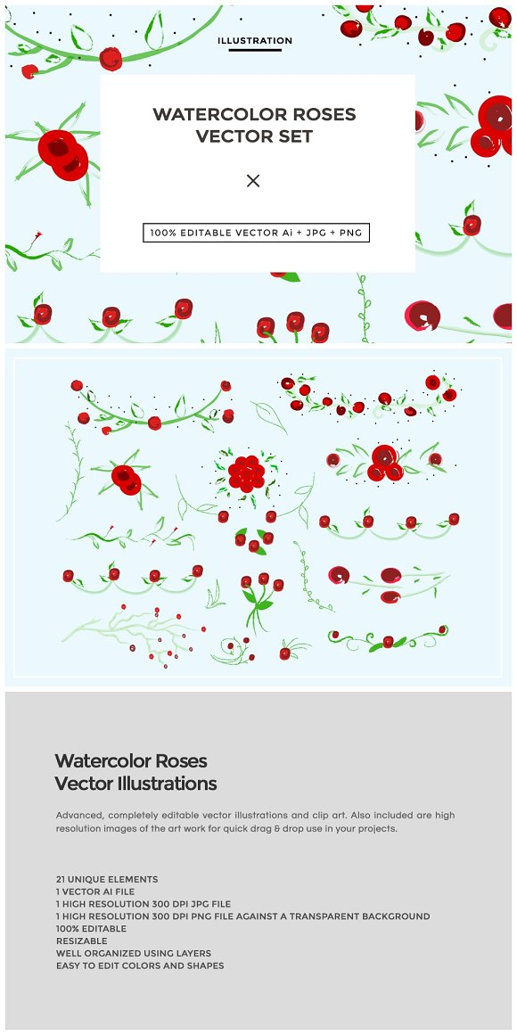 Watercolor Roses - Illustrations