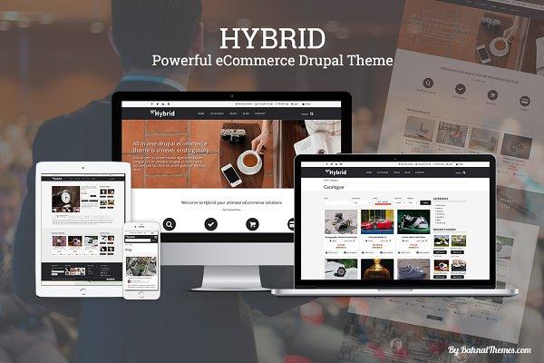 Drupal Themes ~ Creative Market