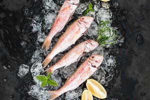 Raw Red Mullet fish with lemon