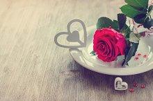 St. Valentine Day romantic rose