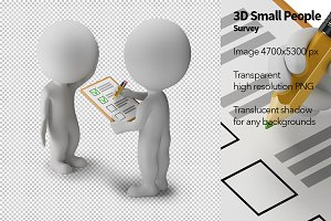 3D Small People - Survey