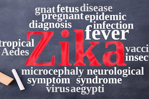 Word cloud on the Zika virus.