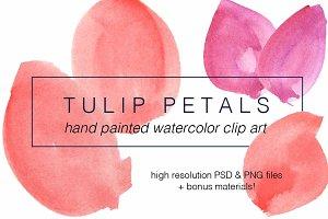 Tulip Petals Watercolor Clip Art