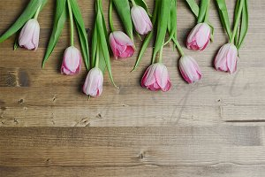 Tulips on Walnut Wood Styled Desktop