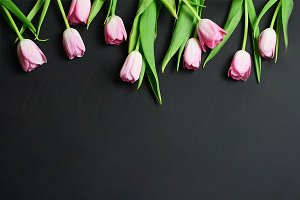 Tulips on Black Styled Desktop