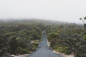 Misty Tasmania