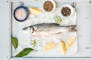 Fresh uncooked seabass fish