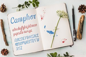 Camphor & Hugo: 2 Fonts + 40 illus.