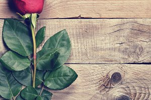 Rose in retro style on old wood