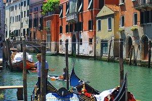 Venice Italy (Vertical)