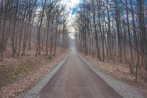 Asphalt trail
