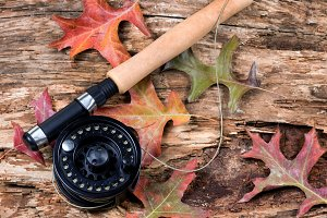 Fishing in autumn season