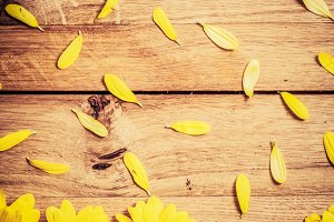 Flowers and petals on rustic wood.