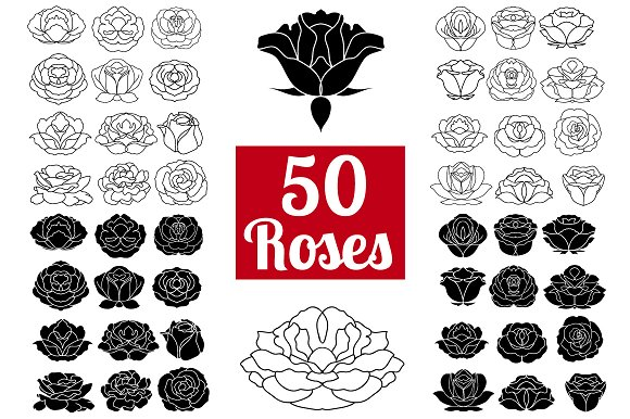 50 Rose Flowers Logo Bundle Icons Creative Market