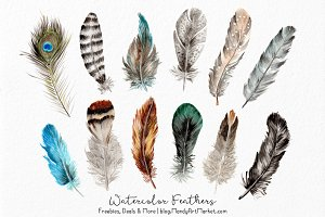 Natural Watercolor Feathers