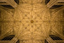 St Patrick's Cathedral Ceiling