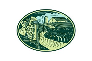 Grapes Vineyard Winery Oval Woodcut