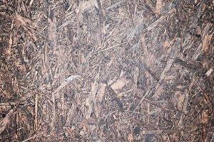 Old wood texture shavings