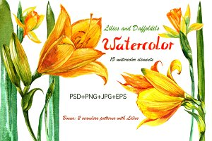 Watercolor yellow flowers
