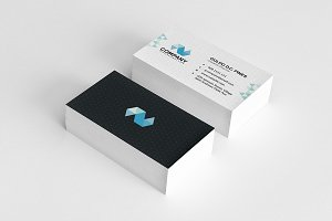 Pro-Series Business Card 01