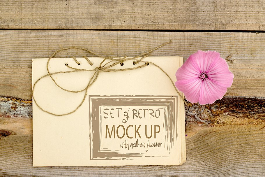 Set of retro mockups with mallow