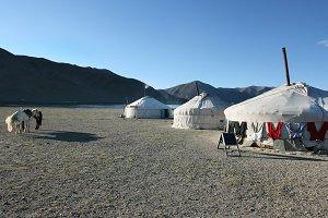 Mongolian yurt view