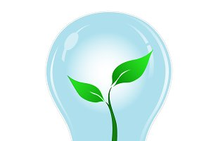 Green, light, bulb