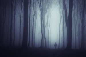Man in dark mysterious forest