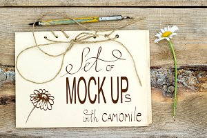 Set of retro mockups with camomile