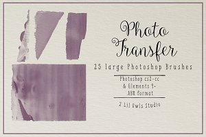 Photo Transfer Brush Collection