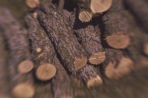 Sawed logs