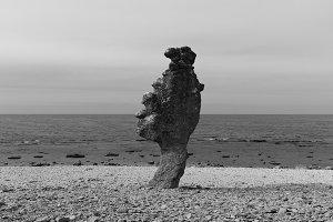 The sea stack
