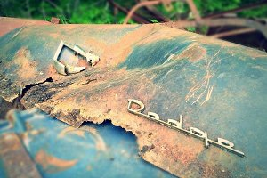 Rusty Dodge Trunk