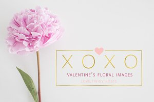 Stock Photo Bundle | Floral Images