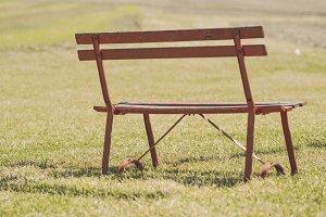 Companion's Bench
