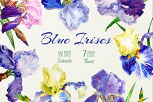 Blue Irises. Watercolor Clip Art