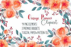 Orange peonies clipart RB-04